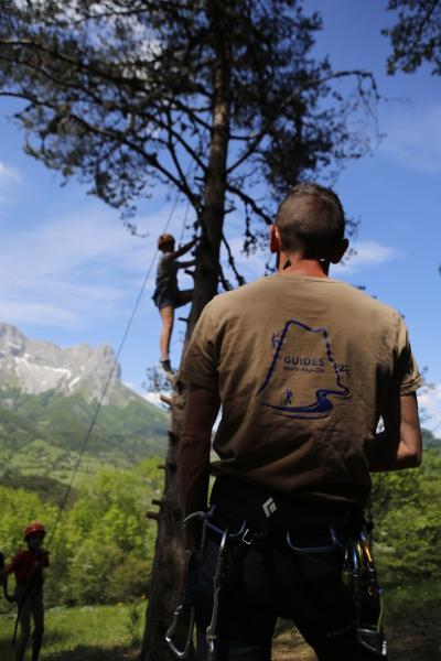 escalade arbre vercors